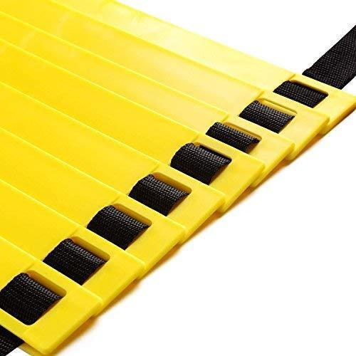APG Flat Regular Adjustable Speed Agility Ladder (8M With 20 Rungs)