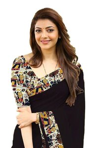 New Chanderi Palu Designer Sarees