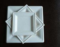 Bagasee Sugarcane Square Plates