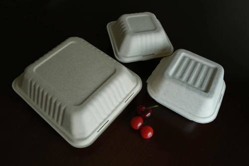 Bagasse Sugarcane Hamberger Box