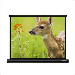 40 inch Portable Projector Screen