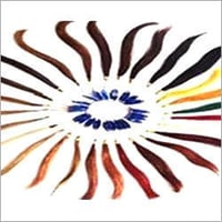 Hair Color Wing
