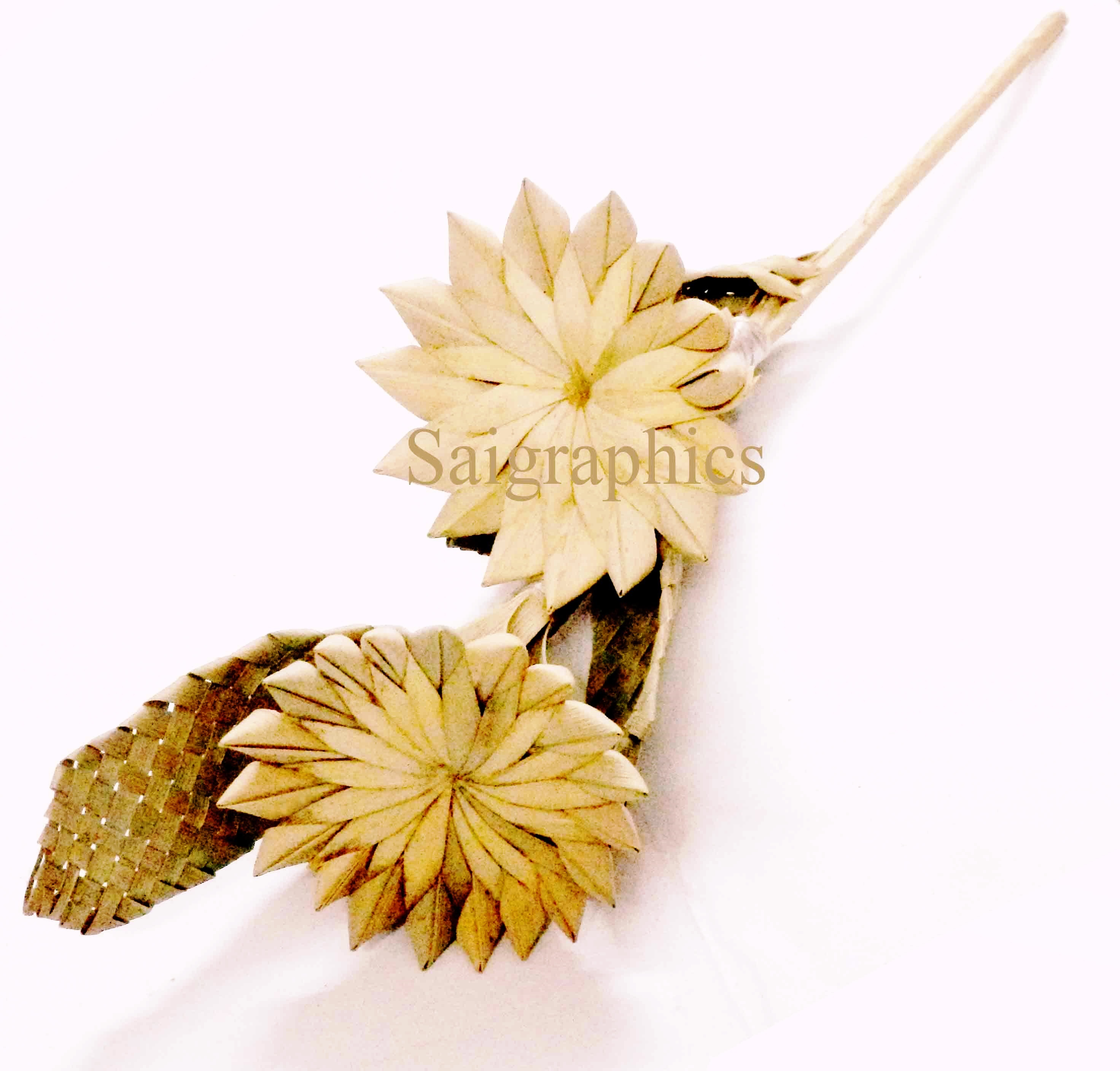 LEAF DRY FLOWERS