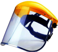 Protective face shield and spectacle