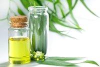 Eeucalyptus Oil