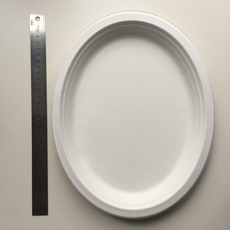 Bagasse Sugarcane Oval Plate