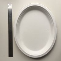 Bagasse Sugarcane Oval Plate