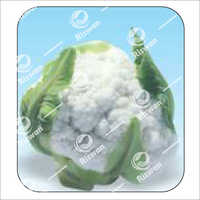 Cauliflower F1 Snow Don