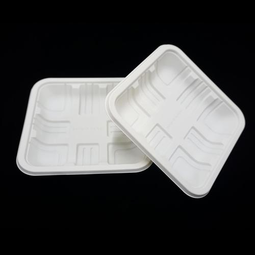 biodegradable Corn Starch Square Plate