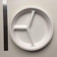 Biodegradable corn starch round plate