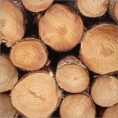 Pine Wood Round Log