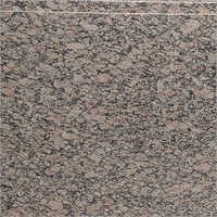 Picaso Granite Slab