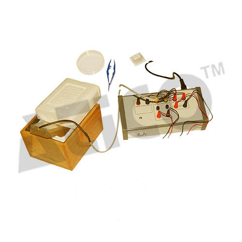 Superconductivity Experiment Kit