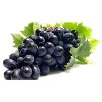 Black Grapes Seed/Seedless