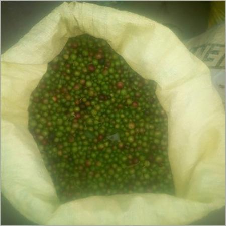 Curry Leaf Seeds With Skin Seeds