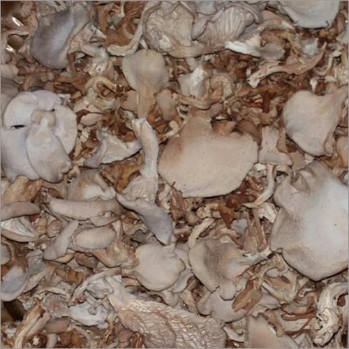 Dry Mushroom Flakes