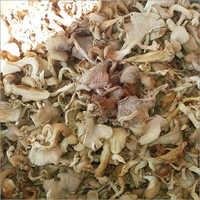 Dry Brown Mushroom Flakes