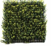 Outdoor Vertical Green wall