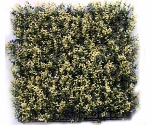 Outdoor Vertical Green wall