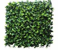 Ourdoor Vertical Green wall