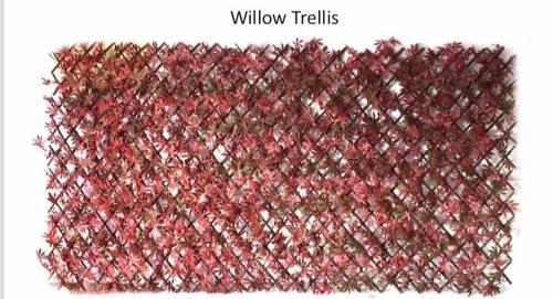 Willow Trellis Green wall