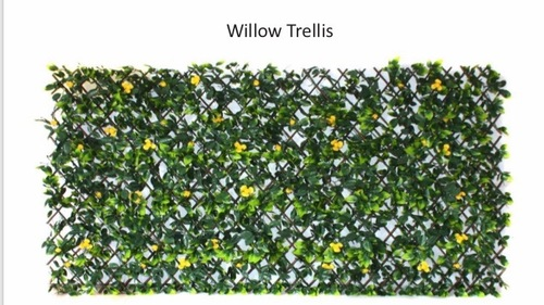 Willow Trellis Green wall