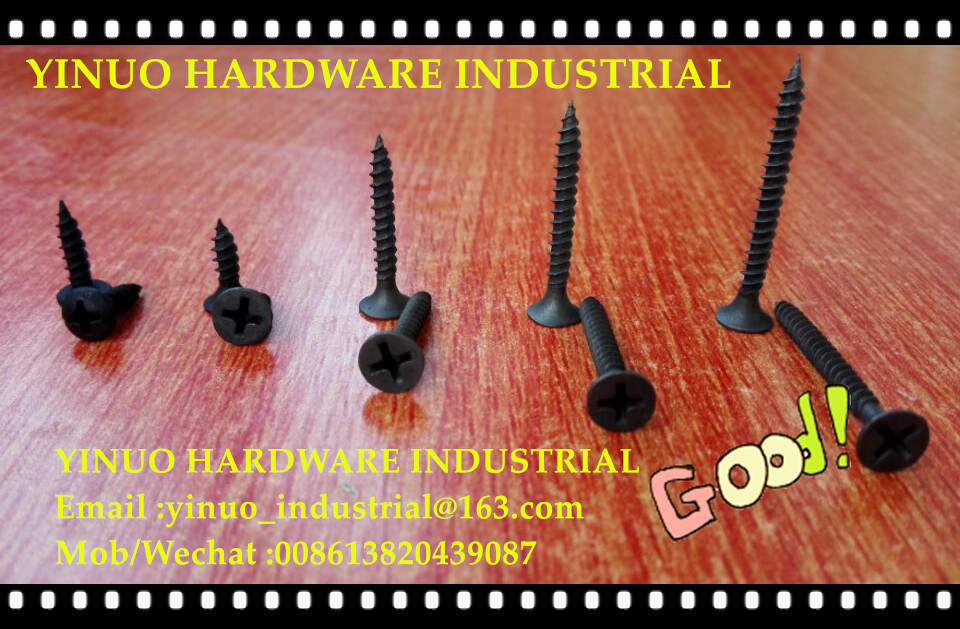 Drywall Screw with Small Color Boxes Packing