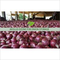 Onion Storage Ozone Generator by Aeolus