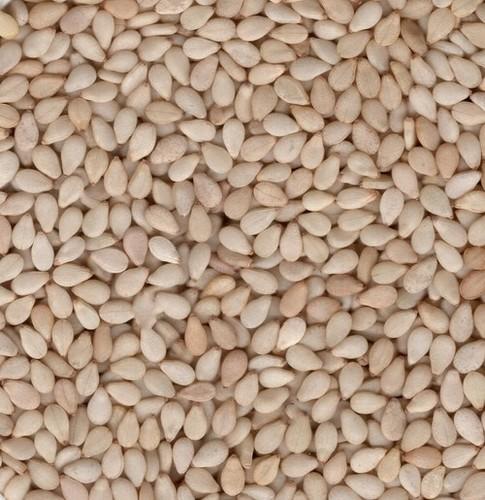 Raw White Sesame Seeds
