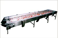 Industrial Inspection Conveyor