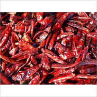 Indian Hot Red Teja Chilli