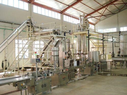 Spirulina Algae Powder Plant