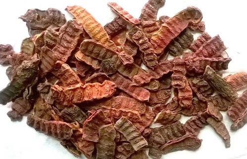 Acacia concinna Dry Extract