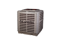 Central Air Cooler