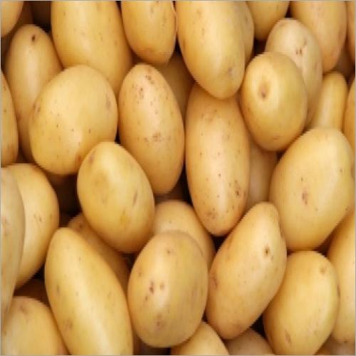 Potato (Fresh Vegetable)