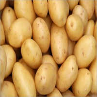 Potato (Fresh Vegetable)