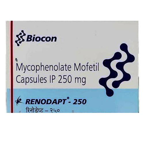 RENODAPT Mycophenolate Mofetil 250MG