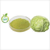 Spray Dried Cabbage Powder