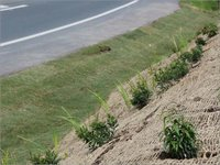 Road Erosion Control Coir Mat