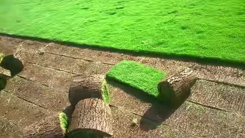 Lawn Development Services