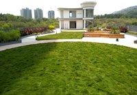 Designer Landscape Services