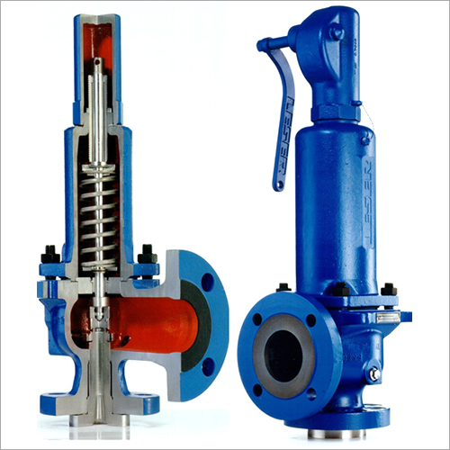 Safety Valve Application: Steam