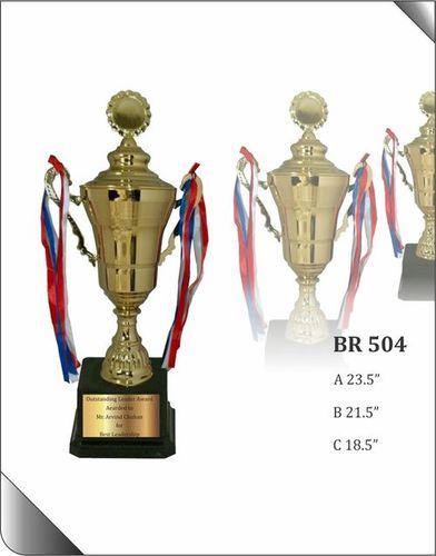 BR 504