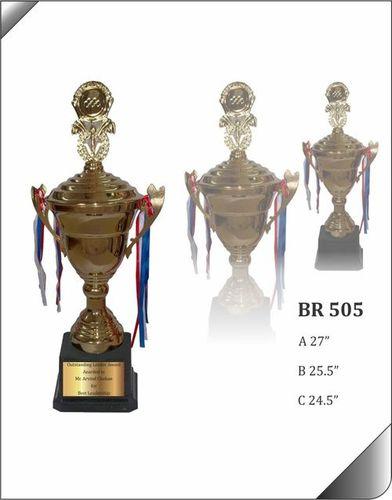 BR 505