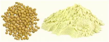 Defated Soya Flour
