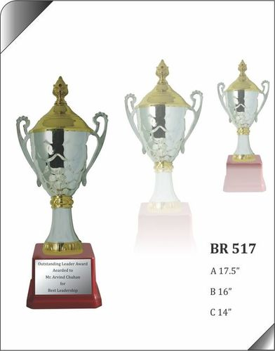 BR 517