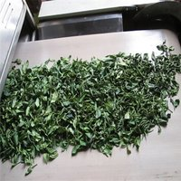 Tunnel Conveyor Tea Fixation Machine