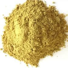 Asparagus adscendens Dry Extract