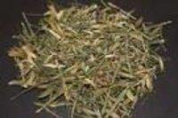 Celestrus paniculata Dry Extract