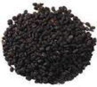 Psoralia carlyfolia Dry Extract